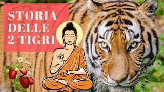 parabola buddista delle 2 tigri